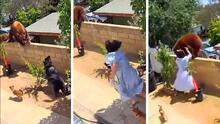 Adolescente salva a sus perros del ataque de una mamá oso en patio trasero su casa en California