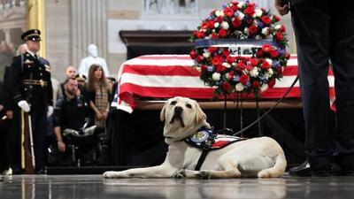Sully rinde honores a su mejor amigo en la Rotonda del Capitolio