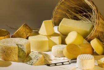 Guía rápida sobre quesos