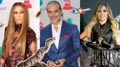 Miedo, pavor y asco: estas son las fobias de los famosos latinos