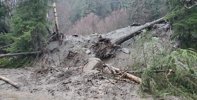 Al menos seis personas están desaparecidas tras un deslave en una comunidad de Alaska