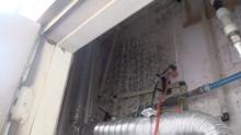 """""""Me siento atado de manos"""": Residente de Austin pide ayuda tras detectarse moho en su apartamento"""