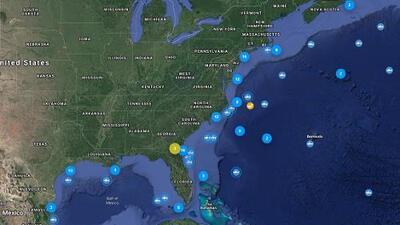 Señalan mayor presencia de tiburones en playas de Carolina del Norte