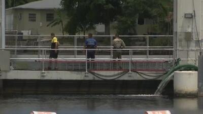 Investigan el hallazgo de un cuerpo en un canal del noreste de Miami