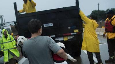 Más de 200 personas han sido rescatadas por helicópteros y embarcaciones de plano fondo en Houston
