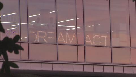 Jóvenes en Houston realizan pancartas para recordar que se aún no hay solución migratoria para los dreamers