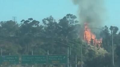 Investigan un incendio en la comunidad de San Pedro que dejó tres acres destruidos