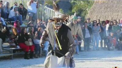 El tradicional festival de la tribu Miccosukee en Florida llega a su edición número 44