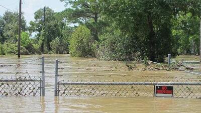 Emiten advertencia de inundación para el río San Jacinto en el área de Sheldon