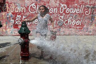 En fotos: Así se protegen algunos de la intensa ola de calor que afecta a más de 100 millones de personas en EEUU
