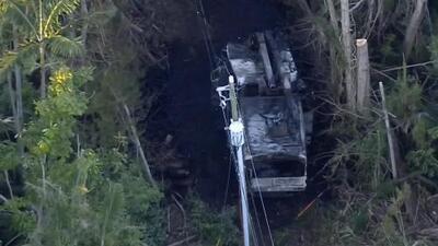 Un jardinero muere electrocutado durante una poda de árboles en Pinecrest