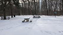 Este parque luce espectacular luego de la tormenta invernal