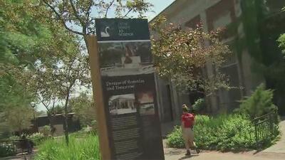 ¿Qué podemos encontrar este verano en el Lincoln Park Zoo de Chicago?