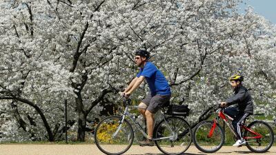 Guía para ir al trabajo en bicicleta en pleno verano