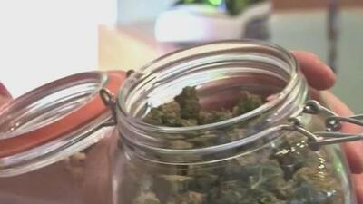 Se expande el programa que permite el uso de marihuana medicinal en Texas