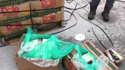 ¡Sorpresa!: encuentran $18 millones en cocaína en una donación de bananas para cárceles en Texas