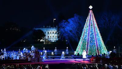 Ya es Navidad en la capital: Donald y Melania Trump encienden las luces del Árbol (fotos)