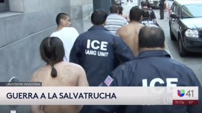 Mara Salvatrucha: la ironía de los niños inmigrantes que huyen de las pandillas, para luego encontrarlas en Nueva York