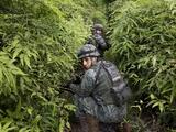 Silencio y ausencia del Estado: la peligrosa frontera donde fueron asesinados los periodistas ecuatorianos