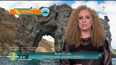 Mizada Géminis 8 de febrero de 2018