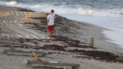Preocupación entre residentes y comerciantes de Broward por presencia de marea roja en playas del condado