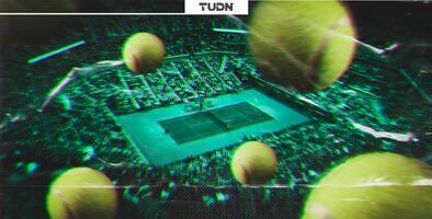 Curiosidades de los Grand Slams de Tenis