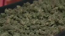 Pensilvania podría ser el decimocuarto estado en legalizar el uso de la marihuana