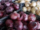 Aumentan los casos relacionado al brote de salmonella por cebollas contaminadas en Pensilvania