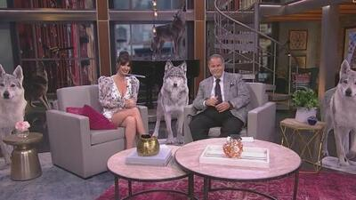 Paz Vega fue la presentadora invitada en El Gordo y La Flaca el mismo día del estreno de Cuna de Lobos