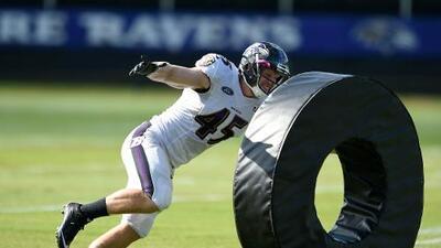 Los arduos entrenamientos de los Baltimore Ravens rumbo a la temporada 2016 NFL