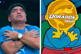 Llegaron los memes de Diego Maradona ante su retorno a la banca con los Dorados de Sinaloa