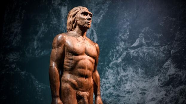 El sexo entre los primeros sapiens europeos y los neandertales fue más común de lo que se creía