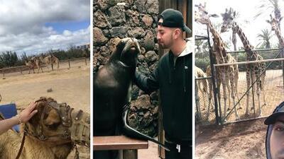 No creerás con qué animal Justin Quiles se dio un beso en la boca