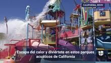 Escapa del calor y diviértete en estos parques acuáticos de California