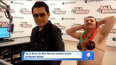 El Harlem Shake del Show de Raul Brindis en Despierta América