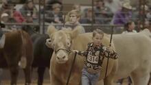 Cancelan el Stock Show Rodeo de Fort Worth que estaba programado para el 2021