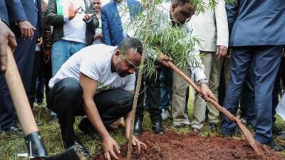 Este país rompió récord plantando más de 350 millones de árboles en 12 horas