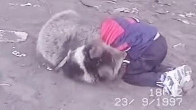 Nurmagomedov, el niño que luchaba con osos y ahora va por McGregor