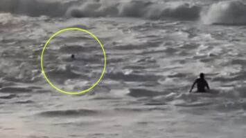 Rescate de impacto: Surfista salva a una mujer de morir ahogada por las olas de más de 15 pies de alto