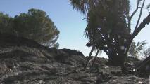 Desalojan a varios residentes a causa de un incendio en el condado Yuba