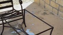 Vecinos del norte de San Antonio denuncian actos de vandalismo en sus propiedades