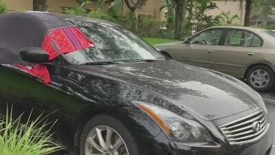 Denuncian que 16 vehículos fueron vandalizados en un complejo de apartamentos en Weston