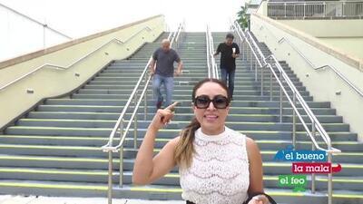 El Bueno La Mala Y El Feo en Miami