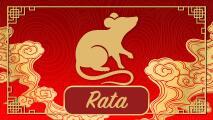 Predicciones para la Rata durante el año del Buey en el Horóscopo Chino