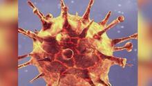 Un experto te explica cómo actúa la variante sudafricana del coronavirus en el cuerpo humano y cómo debes protegerte