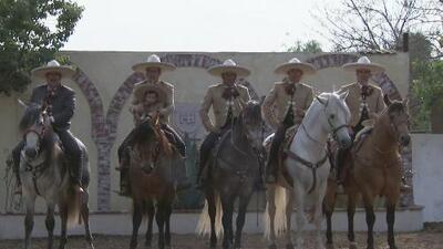 Así preparan los charros mexicanos sus caballos para el Desfile de las Rosas