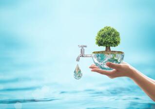 Descubre todos los poderes maravillosos del agua