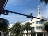 Lo arrestan tras escalar el poste de un semáforo y detener el tráfico en Miami Beach
