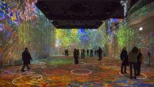Esto debes saber sobre la exhibición 'Immersive Van Gogh' que llega a Arizona