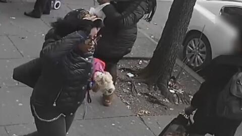 Buscan a una mujer acusada de herir a dos personas con un objeto filoso dentro de un autobús